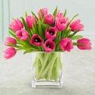 Pink Tulips plus FREE Vase