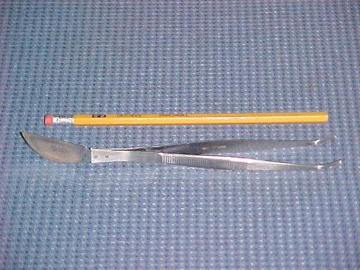 "8 1/4"" Bonsai Tweezers / Angled Japanese Stainless"
