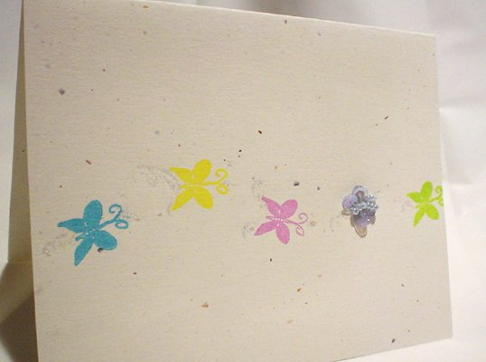 The Trace of Butterflies