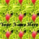 Ebay Store Logo Pink Green Flower BRIGHT Dress Up your Ebay Store Add your Store Name!!