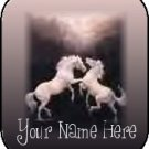 Ecrater Store Logo & HomePage Image White Horses Black Dress Up your Ecrater Store!!