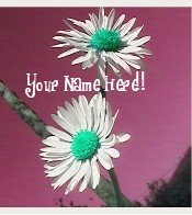 Ecrater Store Logo & HomePage Image Maroon Green White FLower Dress Up your Ecrater Store!