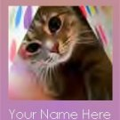 Ecrater Store Logo & HomePage Image Cat Kitten CUTE Pink Dress Up your Ecrater Store!!