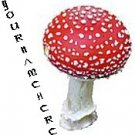 Neoloch.com Store Banner and Logo Combo Red White Mushroom Add your Store Name!