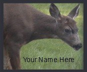 Neoloch.com Store Banner and Logo Combo Deer Doe Green Brown Add your Store Name!