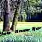 Neoloch.com Store Banner and Logo Combo Green Trees Forest Add your Store Name!