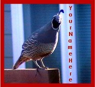 Neoloch.com Store Banner and Logo Combo Maroon Gray Quail Bird Add your Store Name!