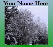 Neoloch.com Store Banner and Logo Combo Green Tree Snow Winter Add your Store Name!