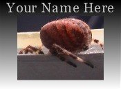 Neoloch.com Store Banner and Logo Combo Creepy Red Spider Add your Store Name!