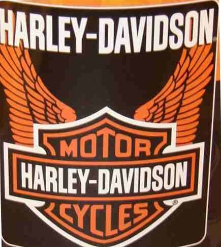 Harley Davidson Fleece Blanket-Wings