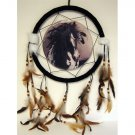 "13"" Horse Dream Catcher w/ Feathers"