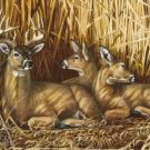 Ducks Unlimited Deer Family Hideaway Tin Sign #1039