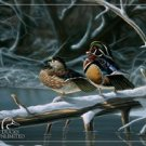 Ducks Unlimited Interlude Tin Sign #1141