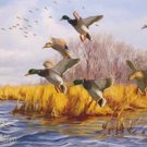 Ducks Unlimited Mallard Ducks Tin Sign #1037
