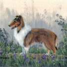 Farm Collie Painting