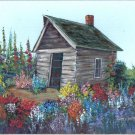 Granny's Flower Shed & garden