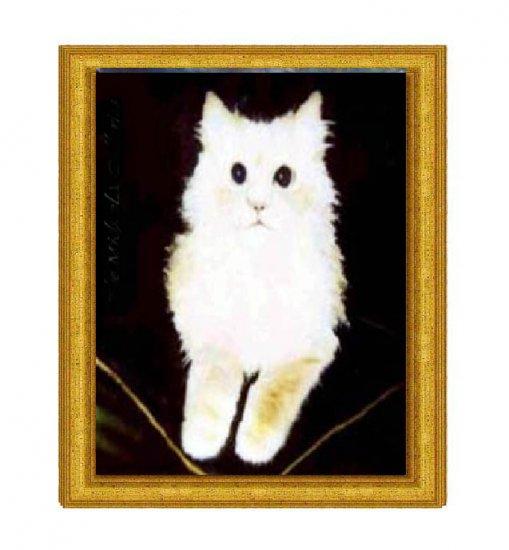 White Cat on Velvet Pillow