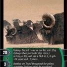 #72 Bantha Herd