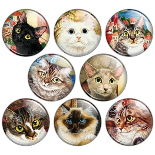 Everyday Cat 1.25 inch Pinback Button Badge Set 1