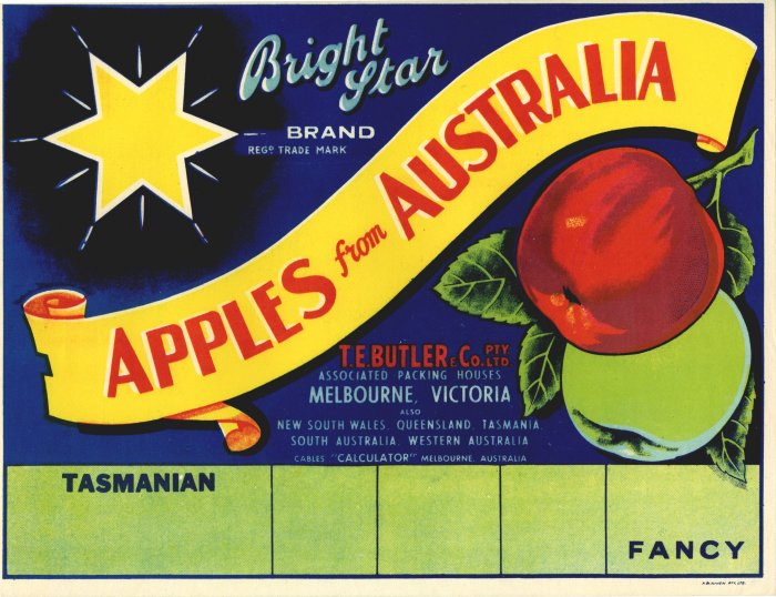 BRIGHT STAR FANCY APPLE CRATE LABEL - BLANK AT BOTTOM