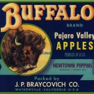 BUFFALO PAJARO VALLEY CRATE LABEL