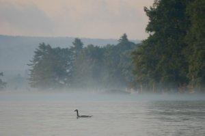 Morning on Deep Creek Lake