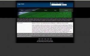 Website Design T0021