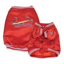 Cardinals Dugout Jacket (Medium)