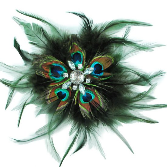Peacock Eye Feather Burlesque Costume Headdress Hair Clip