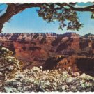SPLENDID VIEW GRAND CANYON NATIONAL PARK 1982 POSTCARD