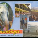 RACING & GRANDSTAND SARATOGA PARK NY NEW YORK POSTCARD