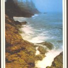 ROCKY TREE LINED COAST CAMDEN MAINE 1980s POSTCARD
