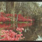 LOVELY SCENE OF MIDDLETON GARDENS CHARLESTON SOUTH CAROLINA SC 825