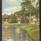 1940 LINEN TWO GRACEFUL SWANS IN A FLORIDA LAKE 903