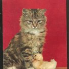 A KITTEN WITH A BABY DUCKLING SIMPLY ADORABLE POSTCARD 960