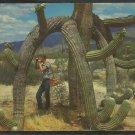 Tourist with Camera Under A Saguaro Cactus In Arizona 991