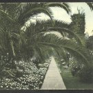 ca 1906 On the Road of a Thousand Wonders Lovely Garden Flower Beds Palm Trees Walkway 1049
