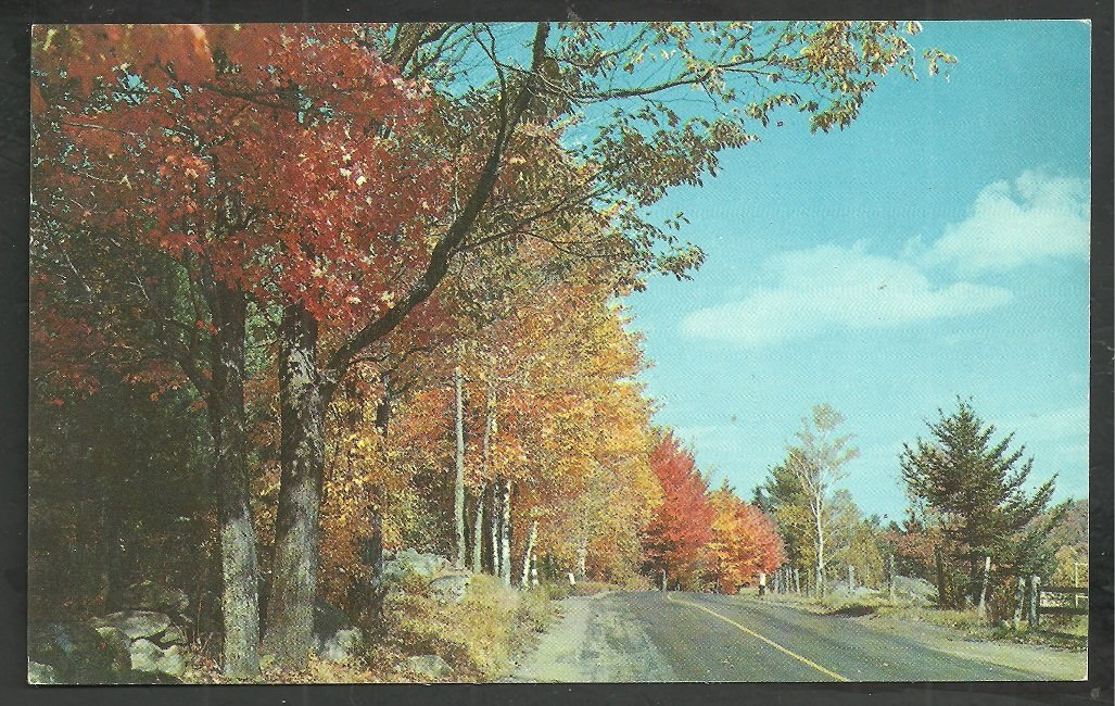 Autumn Foliage on a rural New England Road New Hampshire Vermont Massachusetts 105
