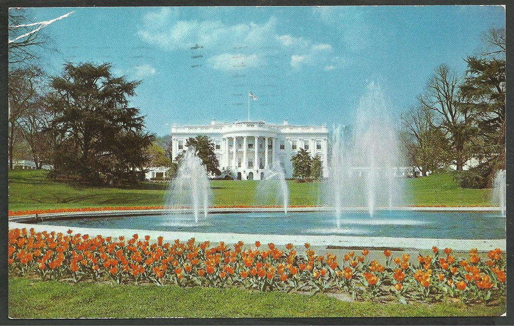 The White House and Grounds Washington DC Flowers Fountain 1953 Chrome Postcard 130