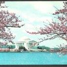 Thomas Jefferson Memorial Washington DC Cherry Blossoms in Bloom Chrome Postcard 1102