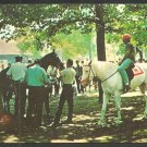 Saddling a Thoroughbred Under the Trees Saratoga Race Course Race Track Horse Racing New York 1109