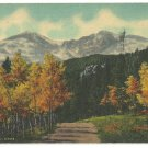 Autumn View Longs Peak The Aspens Rocky Mountain National Park Colorado 1955 Linen Postcard 1123
