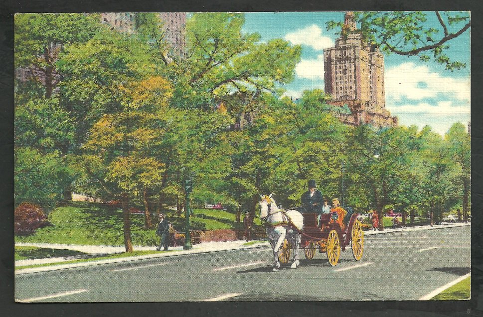 Central Park New York Horse & Carraige Pedestrians Traffic Light Linen Postcard 200