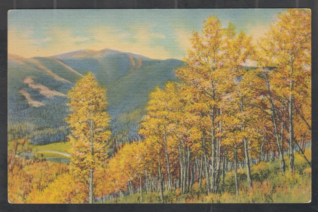 Stunning Autumn Foliage Paints the Trees & Hills In Magic Colors Linen Postcard 1354