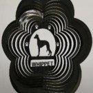 Whippet