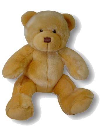 The Hope Bear