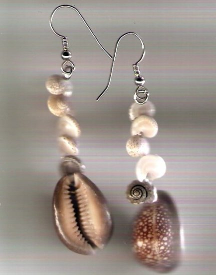 earrings made of cowry and snail shells with hypo-allergenic silver tone ear wires