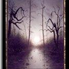 MTG Unhinged Swamp