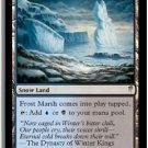 MTG Coldsnap Frost Marsh