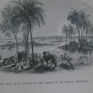 Antique 1851 Holy Bible  40 Illustrations 10 Maps